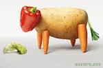 Religion et santé, végétarisme,